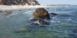 Plaja virgină Corbu - Marea Neagră