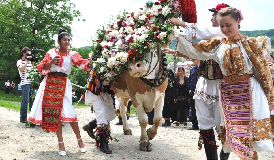 """Cele mai interesante tradiţii româneşti: """"boul înstruţat"""" şi alte obiceiuri populare"""