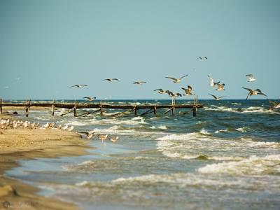 Plaja Corbu este în topul cele mai frumoase plaje din lume